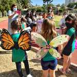 Thumb fiesta mariposa 2020 2  4